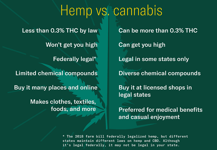 Illustration of Difference Between Hemp and Cannabis