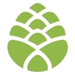 Spruce CBD icon