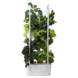 Gardyn Indoor Smart Garden