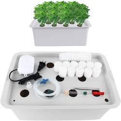 Homend Indoor Grow Kit